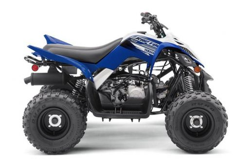 Yamaha-2019 Yamaha  Raptor 90-Richmond Honda House