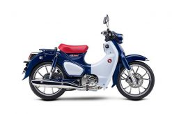 Honda-2019 Honda  Super Cub C125 ABS-Richmond Honda House