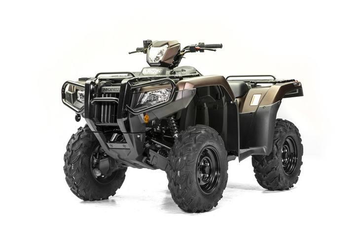 2020 Honda FourTrax Foreman Rubicon 4x4 EPS